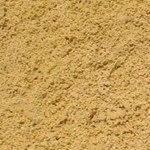 sydney sand
